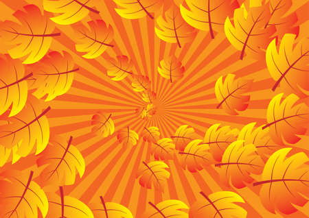 Abstract rays background. Orange palette. Vector illustration. Vector