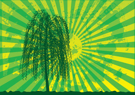 Tree silhouette on grunge rays background. Green - yellow palette. Vector illustration. Stock Vector - 4432377