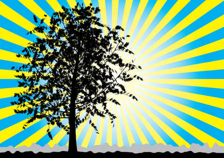Tree silhouette on sky rays background. Blue - yellow palette. Vector illustration. Illustration