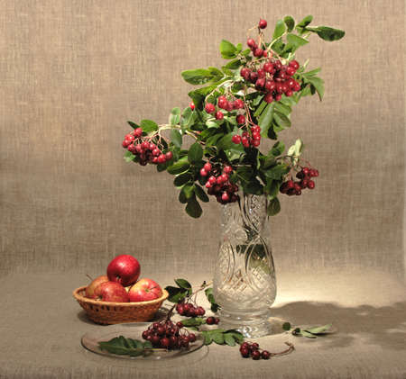 macro photography: Bouquet of ashberry in glass vase and group of a red apples. Close-up. Still-life on linen textile backdrop. Stock Photo