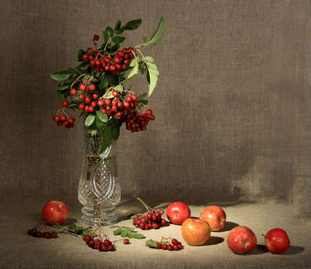 Bouquet of ashberry in glass vase and group of a red apples. Close-up. Still-life on linen textile backdrop. photo