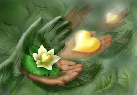 Still-life with hands, leaf and flower as heart. Stock Photo