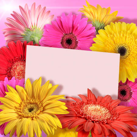 Abstract background of flowers. Greeting card. Close-up.  photo