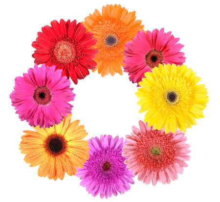 Frame as ring of flowers. Isolated on white background. Close-up.  photo