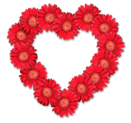 Bouquet of red flowers as heart-form on white background. Close-up. Studio photography. Stock Photo - 7304560