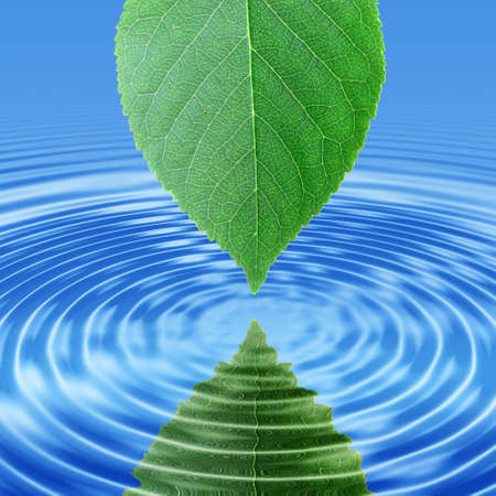 Abstract background of a reflect green leaf in blue water. Close-up. photo