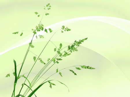 Background with single branch of green grass. Close-up. Stock Photo - 7711466