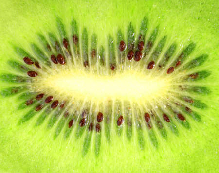 Abstract background of the ripe kiwi slice. Close-up.  photo