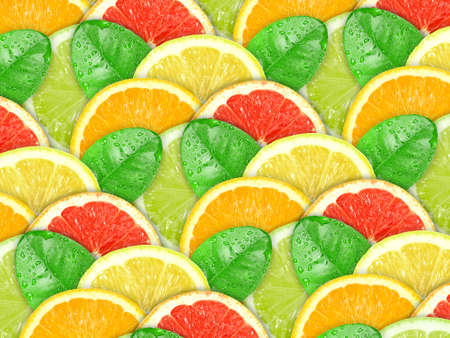 Abstract background with motley citrus-fruit slices and green leaf with dew for your design. Close-up. Studio photography. Stock Photo - 12376458