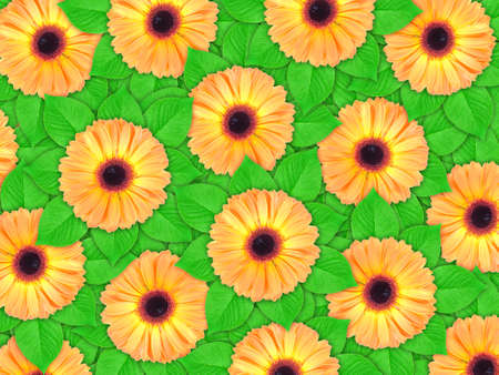 Abstract background of orange flowers and green leaf for your design. Close-up. Studio photography. Stock Photo - 12376463
