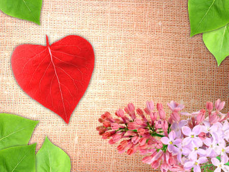 Abstract Valentine textile background with a branch flowers and green leaf of lilac and red heart of leaf-form for your design. Close-up. Studio photography. photo