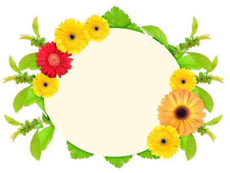 Floral ellipse frame with motley flowers and green leaf. Nature art ornament template for your design. Isolated on white background. Close-up. Studio photography. photo