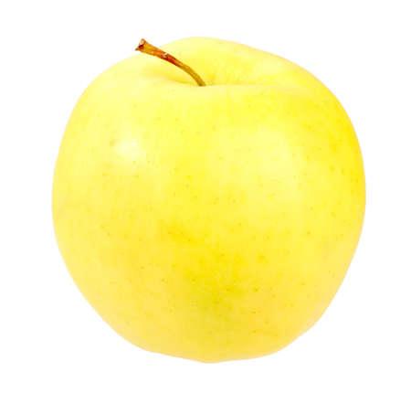 Single a fresh yellow apple. Isolated on white background. Close-up. Studio photography. photo