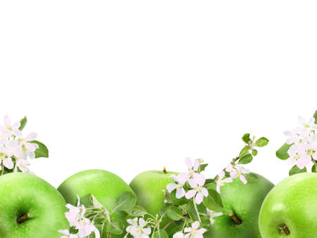 Background with heap of fresh green apples and flowers. Isolated on white. Close-up. Studio photography. photo