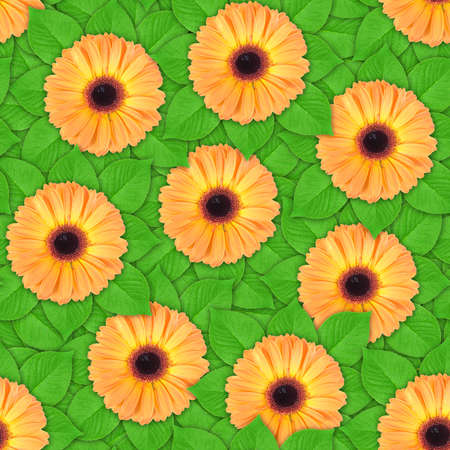 Abstract background of orange flowers and green leaf. Seamless pattern for your design. Close-up. Studio photography. photo