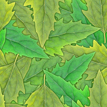 Abstract background of green leafs. Seamless pattern for your design. Close-up. Studio photography. Stock Photo - 13678837