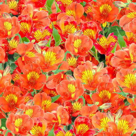 Abstract background of orange lily flowers and green leafs. Seamless pattern for your design. Close-up. Studio photography. photo