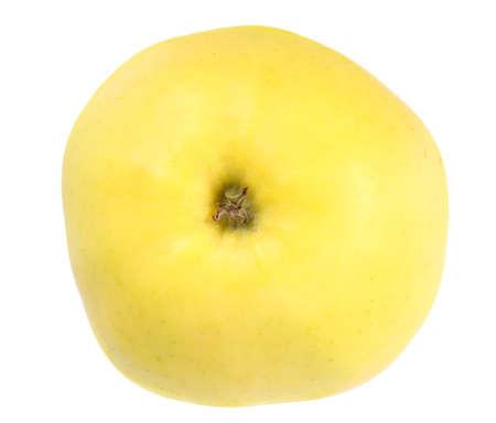 One fresh yellow apple  Isolated on white background  Close-up  photo