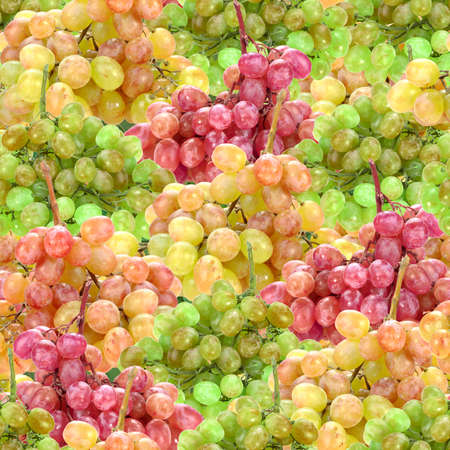Abstract background with branches of fresh ripe motley grape. Seamless pattern for your design. Close-up. photo