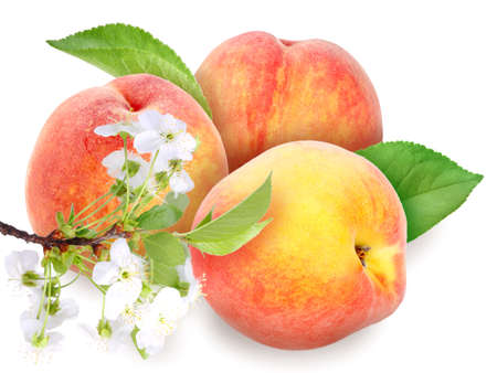 Heap of fresh orange peaches with green leaf and flowers  Placed on white background  Stock Photo - 13767322