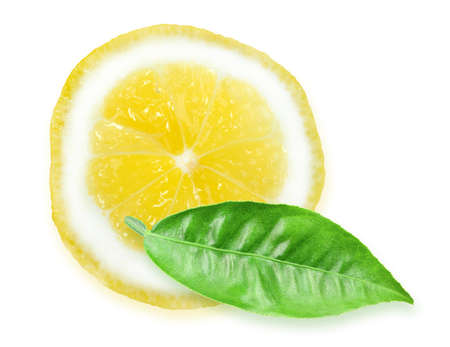 One slice of yellow lemon and green leaf photo