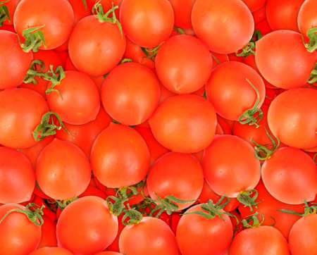 Abstract background of ripe red tomatos. Close-up. Studio photography. photo