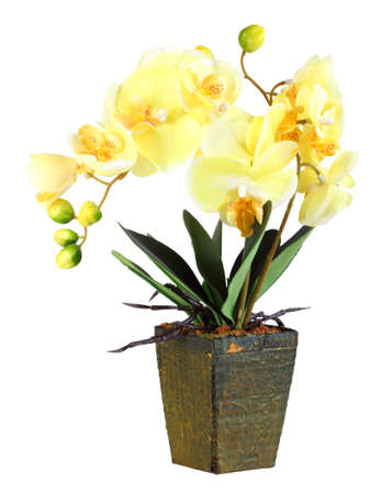 artificial flower: Single artificial branch flowers of yellow orchid in flowerpot. Isolated on white background. Close-up. Studio photography.
