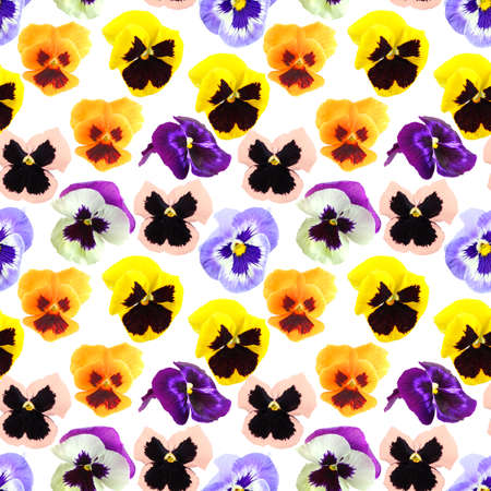 Abstract seamless pattern with motley flowers of pansyes . Isolated on white background. Close-up. Studio photography. photo