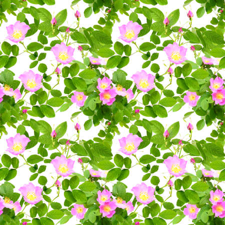 Abstract seamless pattern with pink flowers, buds and green leafs of dog-rose.  photo