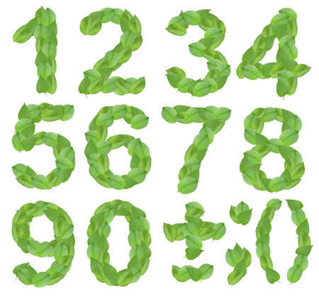 2 3: Set of foliage-figures and symbols - 1, 2, 3, 4, 5, 6 7, 8, 9, 0. Isolated on white background. Close-up. Studio photography.