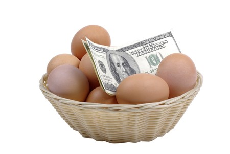 Eggs with dollars in basket isolated on white background. Financial concept. photo