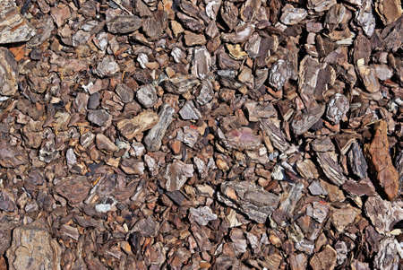 Shredded brown bark as decoration for garden. Good as background or backdrop. photo