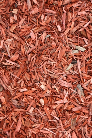 Red woodchips as textured background. Stock Photo