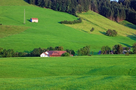 Green alpine hillside, Switzerland, Europe. photo