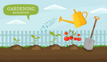 gardening  equipment: Garden colorful designs elements vector farm illustration icon set of different gardening equipment.