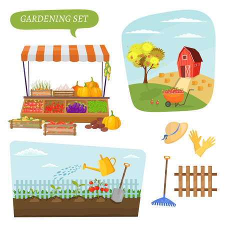 Farm infographics beautiful agriculture set with landscapes field and garden cartoon elements village banner vector illustration Ilustrace