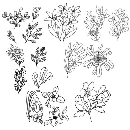 Set of flowers in vector graphics, in a linear style, for decorating wallpapers, tattoos, notebook covers, wrapping paper, print for clothes, stikers Vettoriali