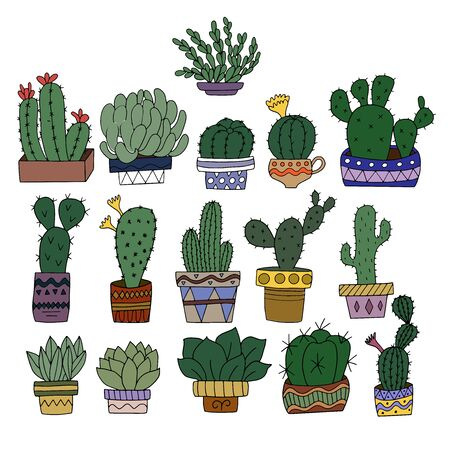 A set of 16 types of cacti in painted flower pots. Vector graphics for the design of botanical magazines and illustrations