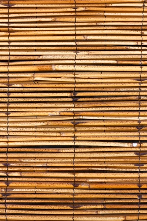 Old bamboo texture.Can be used as a background Stock Photo - 9185930