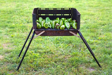 Grren peppers baking on a barbecue outside on the grass Stock Photo - 10634635