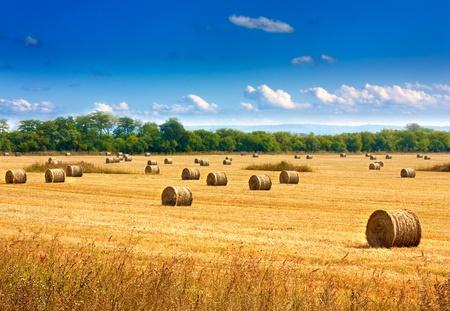 Mooie plattelandsomgeving. Ronde strobalen in geoogst velden en blauwe hemel met wolken Stockfoto