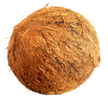 Coconut closeup,isolated  on white background photo