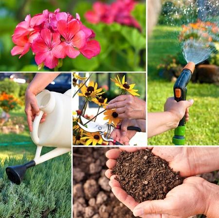botanical gardens: Gardening theme or collage.Representing fertility