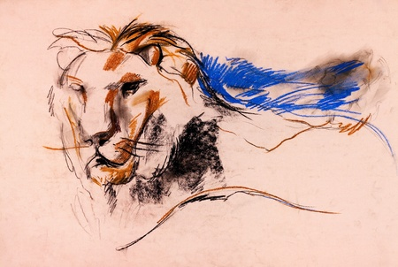 Old,grunge original pastel and  hand drawn, working  sketch of a lion.Free composition photo