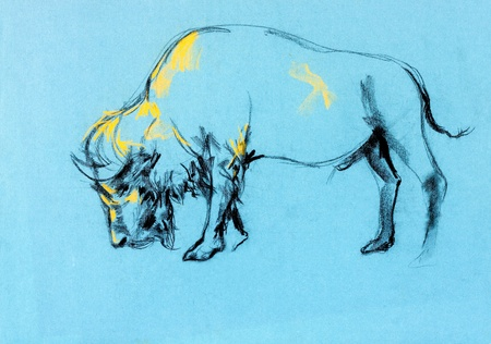 american bison:  Original pastel and  hand drawn painting or  working  sketch of buffalo.Free composition