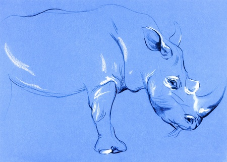 Original pastel and  hand drawn painting or  working  sketch of rhinoceros.Free composition photo