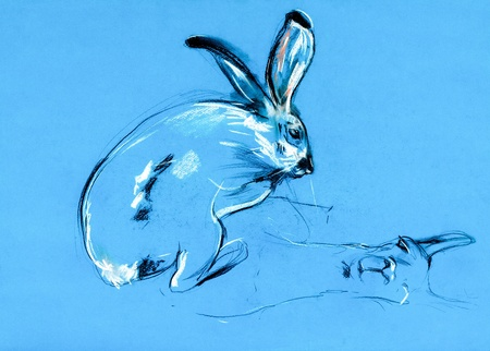 Original pastel and  hand drawn painting or  working  sketch of rabbit (bunny) and llama.Free composition photo