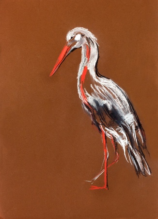 Original pastel and  hand drawn painting or  working  sketch of a  stork.Free composition photo