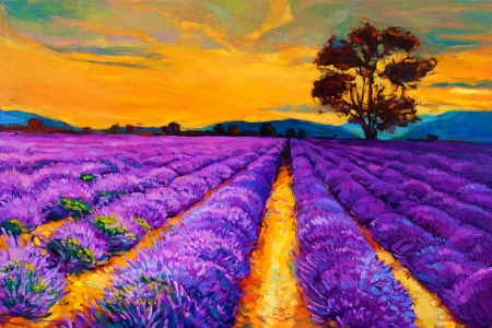 hokkaido: Original oil painting of lavender fields on canvas.Sunset landscape.Modern Impressionism Stock Photo