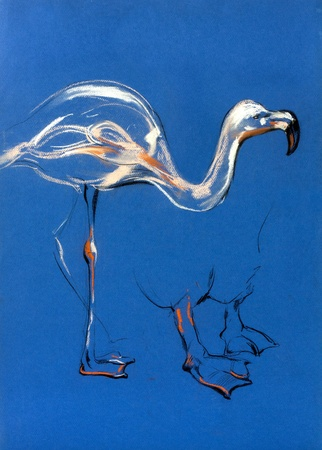 Original pastel and  hand drawn painting or  working  sketch of flamingo.Free composition Stock Photo - 17280143
